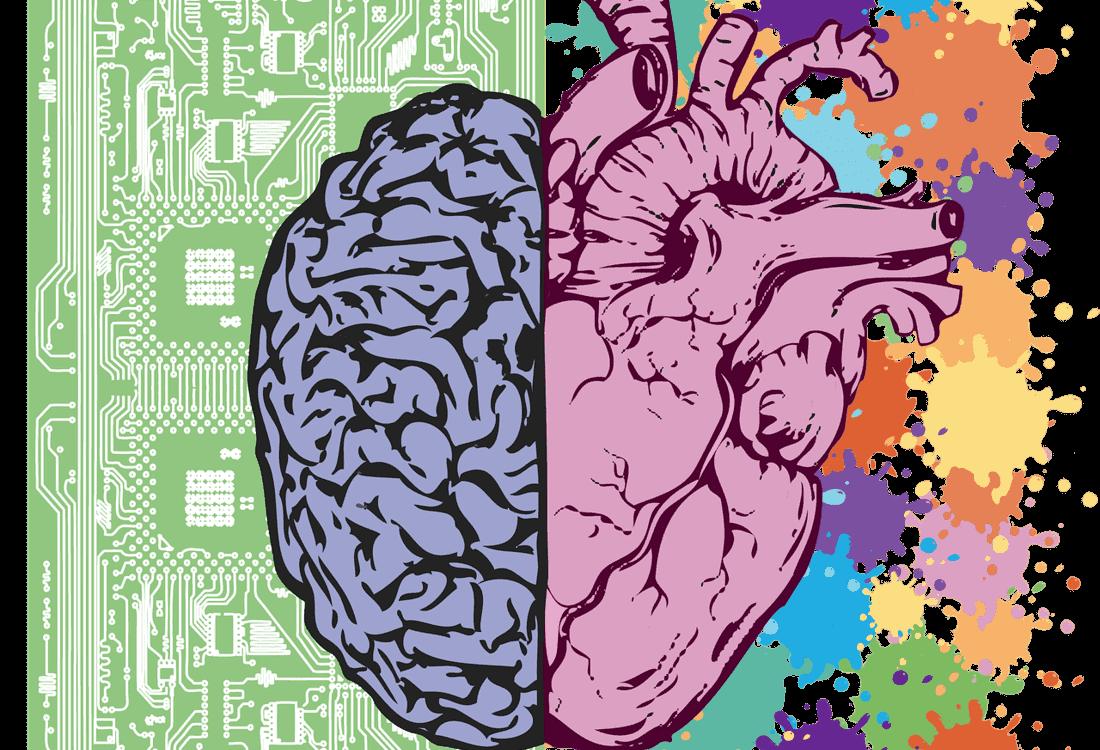 illustration cerveau section tarif page offre soin en cabinet et à distance site stephanie legay thérapies énergétiques